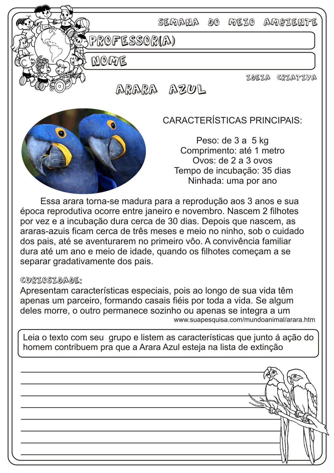 Atividade Araras Azuis / Temática Meio Ambeinte Animais em risco