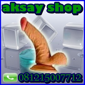 Alat bantu sex, Sextoys