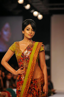 Actress Shriya Saran On The Ramp in a Saree at Lakme Fashion Week Winter Festive 2014  4