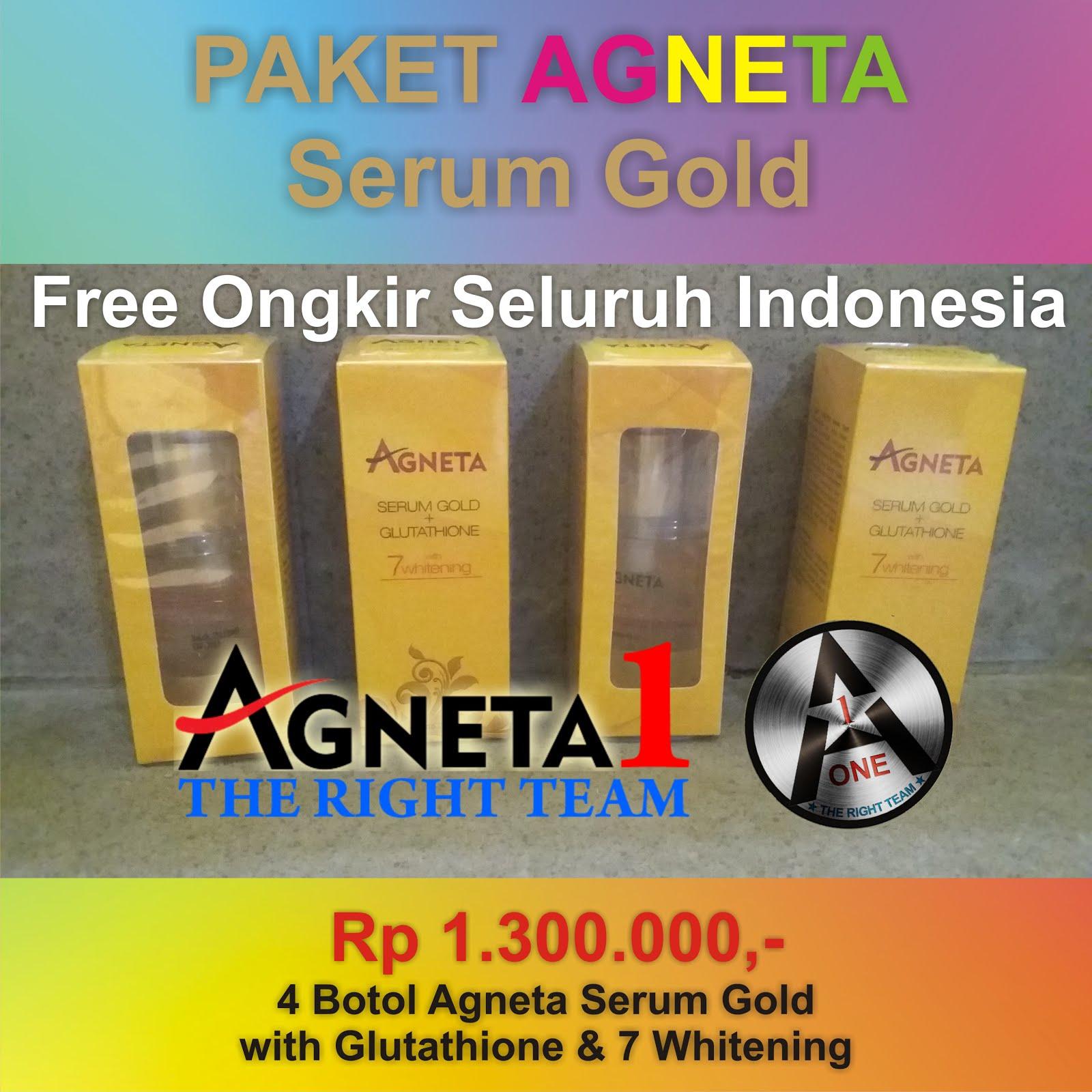 Paket Serum Agneta Gold