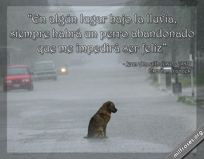 En algún lugar bajo la lluvia, siempre habrá un perro abandonado que me impedirá ser feliz. frases de Jean Anouilh escritor francés