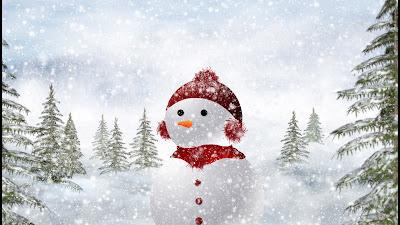 der schönste schneemann