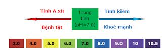 bảng tính pH