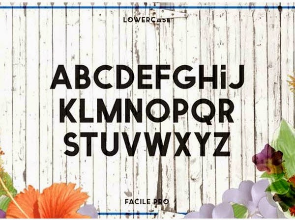 Twicolabs Typefoundry free fonts