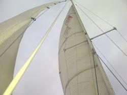 Love Sailing Like I do?