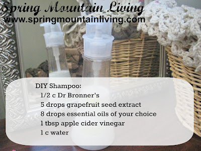 natural shampoo recipe
