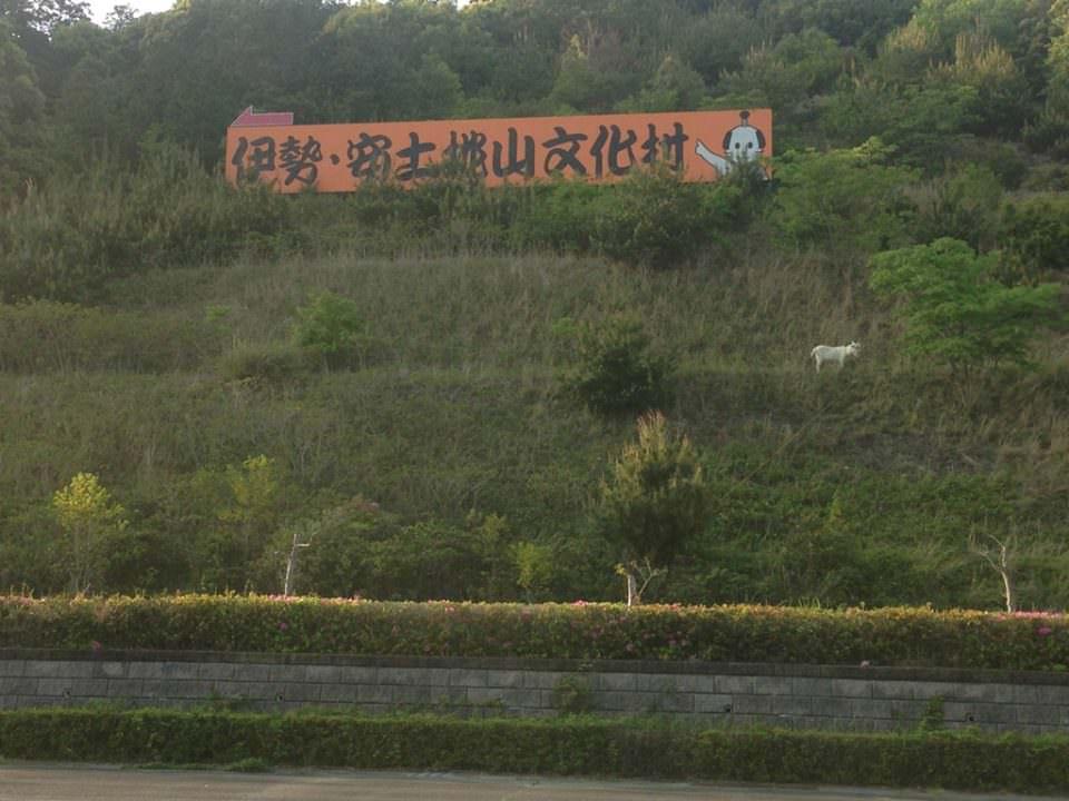 三重県伊勢市二見町にある「伊勢・安土桃山文化村」のとある一角とヤギ。
