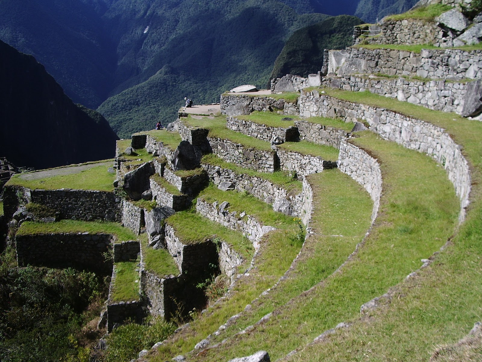 Related keywords suggestions for machu picchu terraces for Terrace farming model