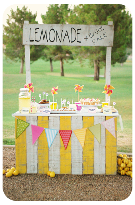 michelle ravencroft photography lemonade stand