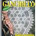 Revista: Ganchillo Artístico 362 (modelos decorativos para el hogar)