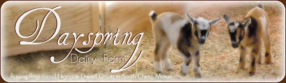 Dayspring Dairy Farm