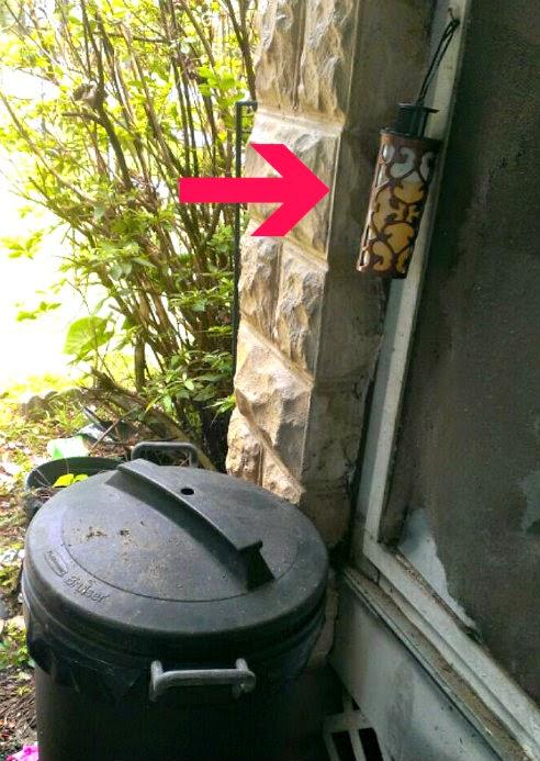 rescue fly ornamentrap 4