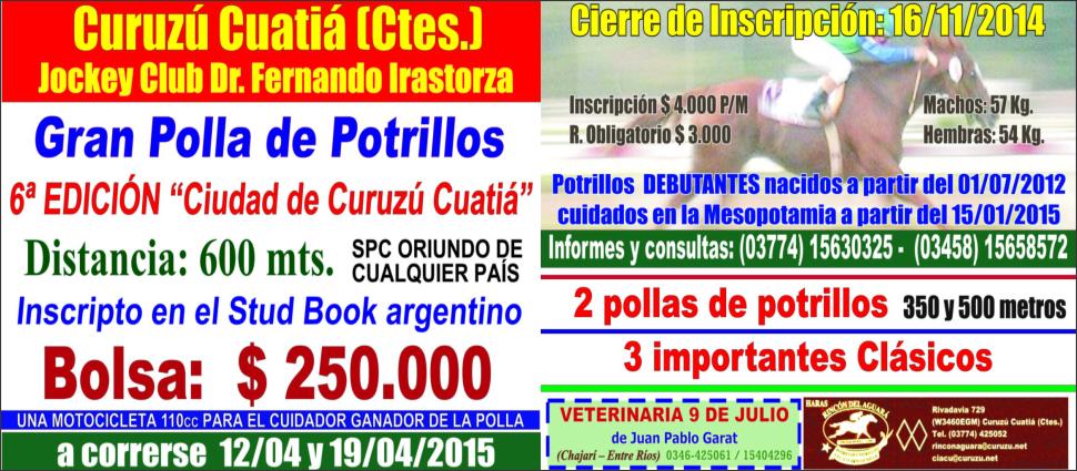 C. CUATIA - POLLA 2015