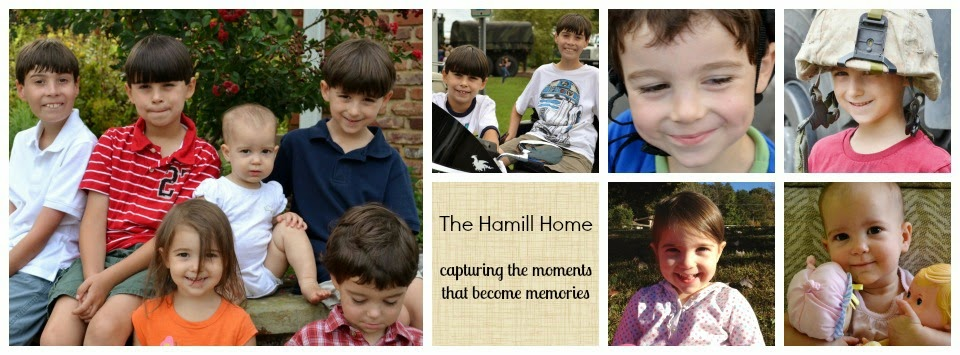 The Hamill Home