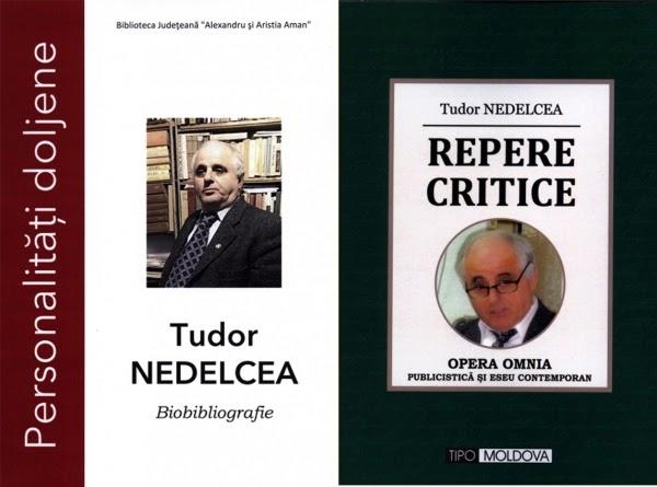 Tudor Nedelcea - Repere critice