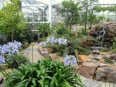 حديقة بلامين النباتيه في فرانكفورت