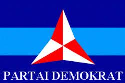 Ketua DPC PD  Kota Depok Diberhentikan