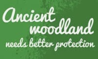 save our ancient woodland