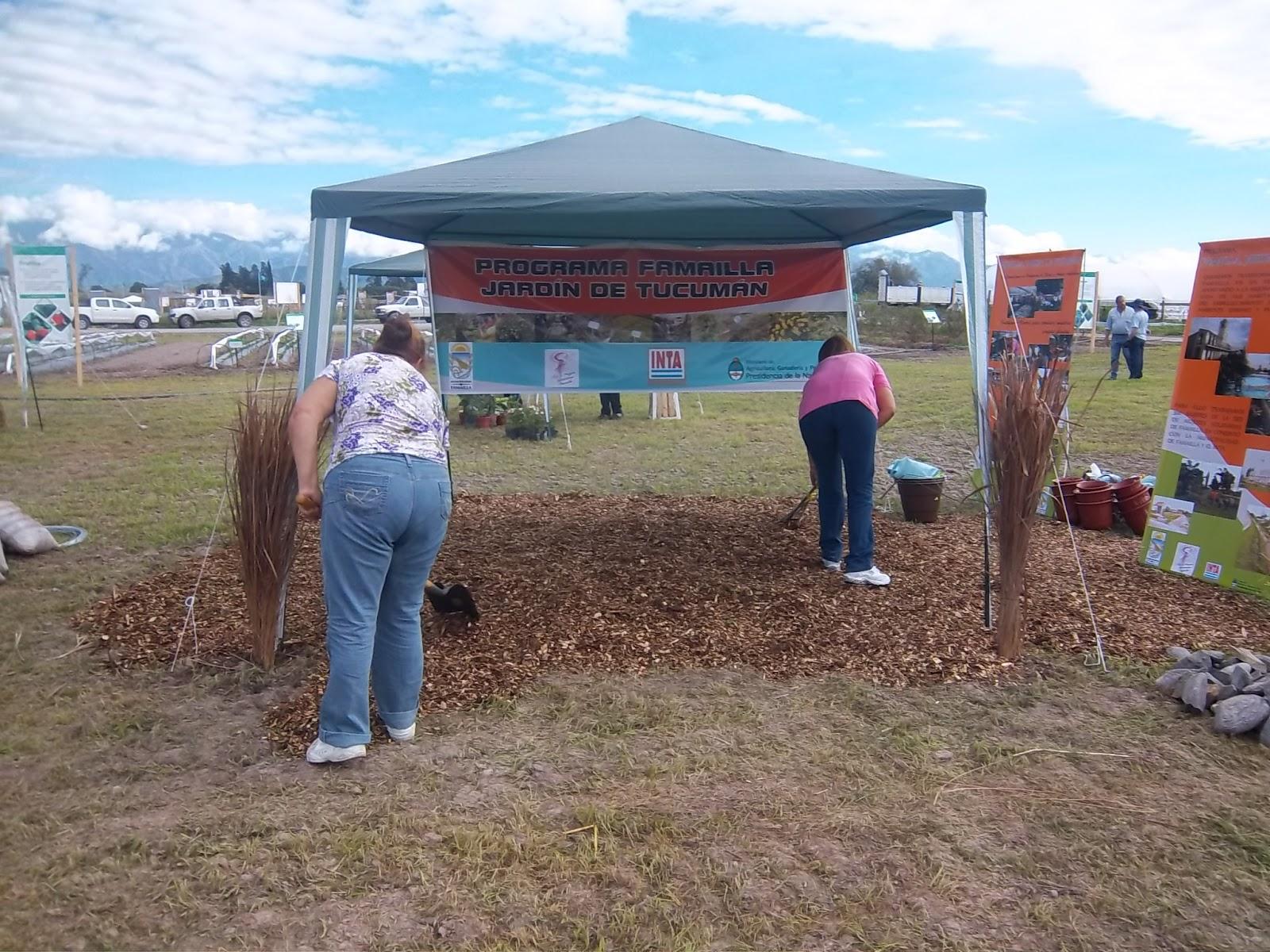 Red De Mujeres Solidarias Famailla Tucuman