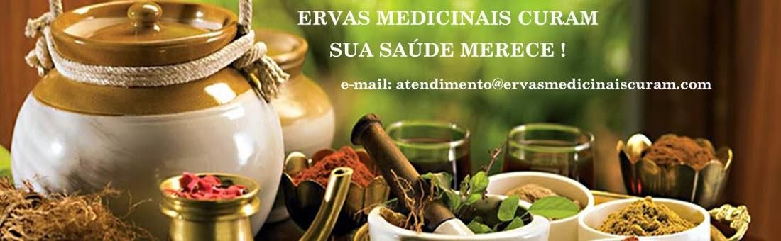 Ervas Medicinais, plantas medicinais, chá e remédios para emagrecer, chás medicinais