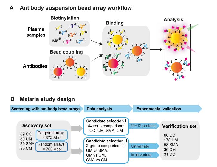 research paper of malaria