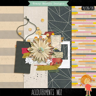 https://www.facebook.com/pages/Tracy-Martin-Scrapbook-Designs/231689303547931?sk=app_161128210587174