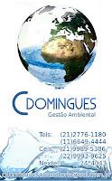 C DOMINGUES