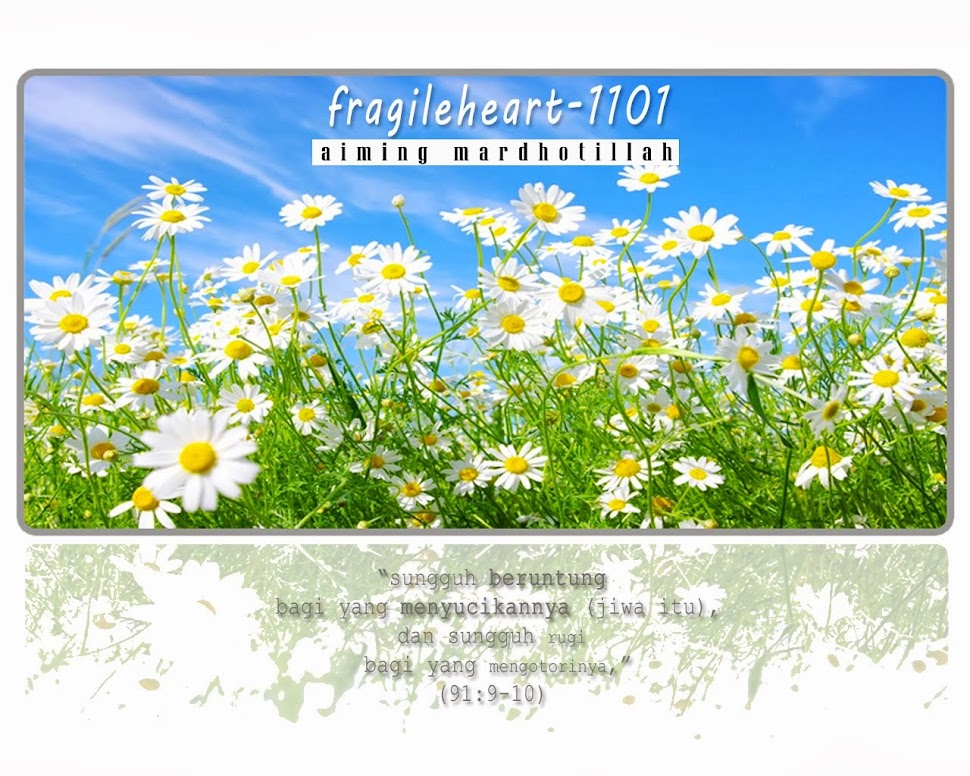 fragileheart-1101