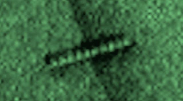 Armored Worm Found In Mars Sand Dune In Rover Photo UFO%252C%2BUFOs%252C%2Begyptian%252C%2Bsightings%252C%2BKylo%252C%2BBB8%252C%2BForce%2BAwakens%252C%2Barchaeology%252C%2B101%252C%2BEnterprise%252C%2Bastronomy%252C%2Bscience%252C%2BStargate%252C%2BBill%2BGates%252C%2Bnano%252C%2Btech%252C%2Bovni%252C%2Bomni%252C%2Bworm%252C%2BJustin%2BBieber%252C%2BMars%252C%2Blight%252C%2Bholy%252C%2Bbible%252C%2BObama%252C%2Balien%252C%2BDOE%252C%2B111
