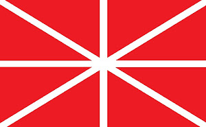 Amerysk Faan - Amerysk Flag