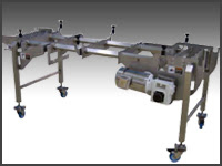 NeXtconveyor NeXtgen II Sanitary Conveyor