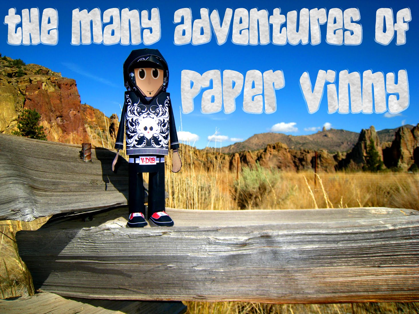 The Many Adventures Of                                                                  Paper Vinny