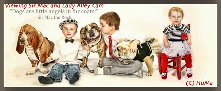 Life of Sir Mac and Lady Alley