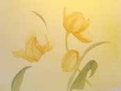 Tres Yellow Tulips in Process