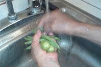 lavar-verduras-salud-xl