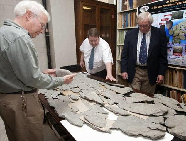Godzillus Fossil