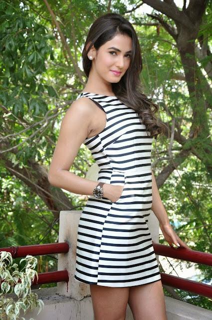 Sonal Chauhan Stills At Pandaga Chesko Movie Interview