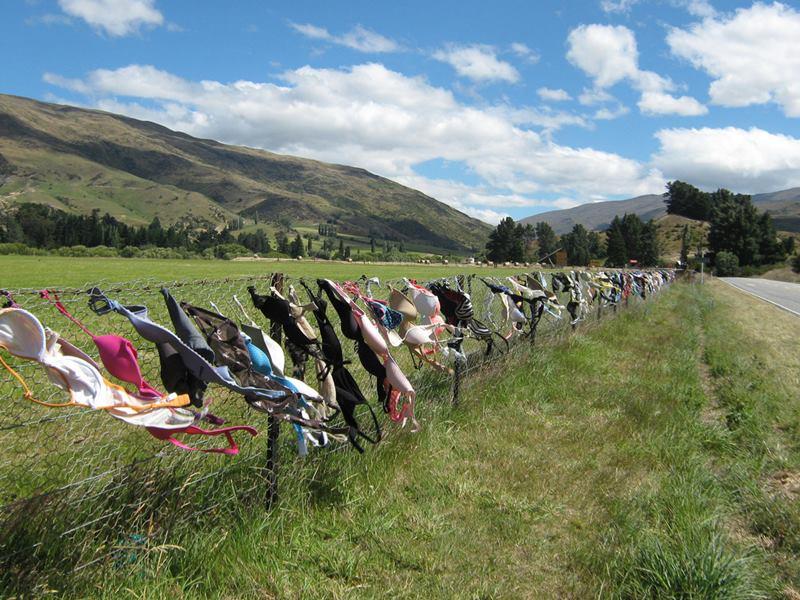 The Cardrona Bra Fence, New Zealand