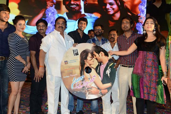 saradaga ammaitho movie audio release funtion stills1