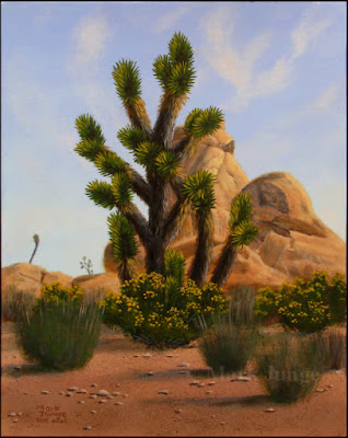 Joshua tree,monzogranite,rock,formation,National Park,yellow flowers,goldenbush,desert,Mojave,climb