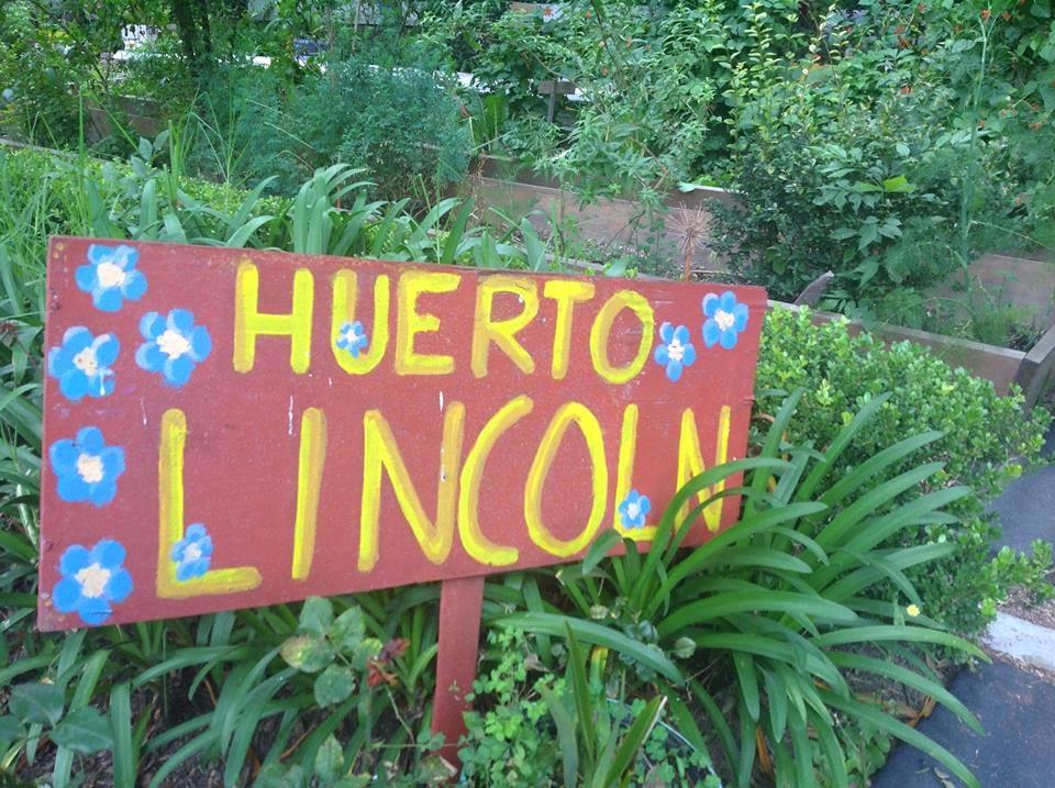 HUERTO LINCOLN