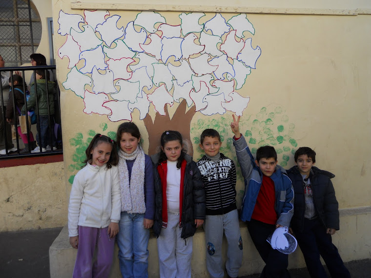 Les nostres fotos. l'arbre de la pau