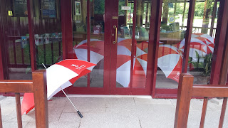 Umbrellas at Park Run Cornwall