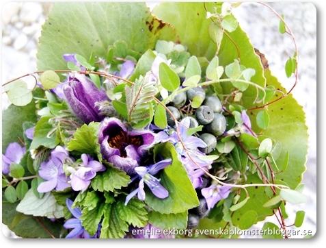 brudbukett trädgård, brudbukett vild, bukett backsippor, bukett skogsvioler, brudbukett lila