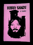 Bobby Sands - El Diario