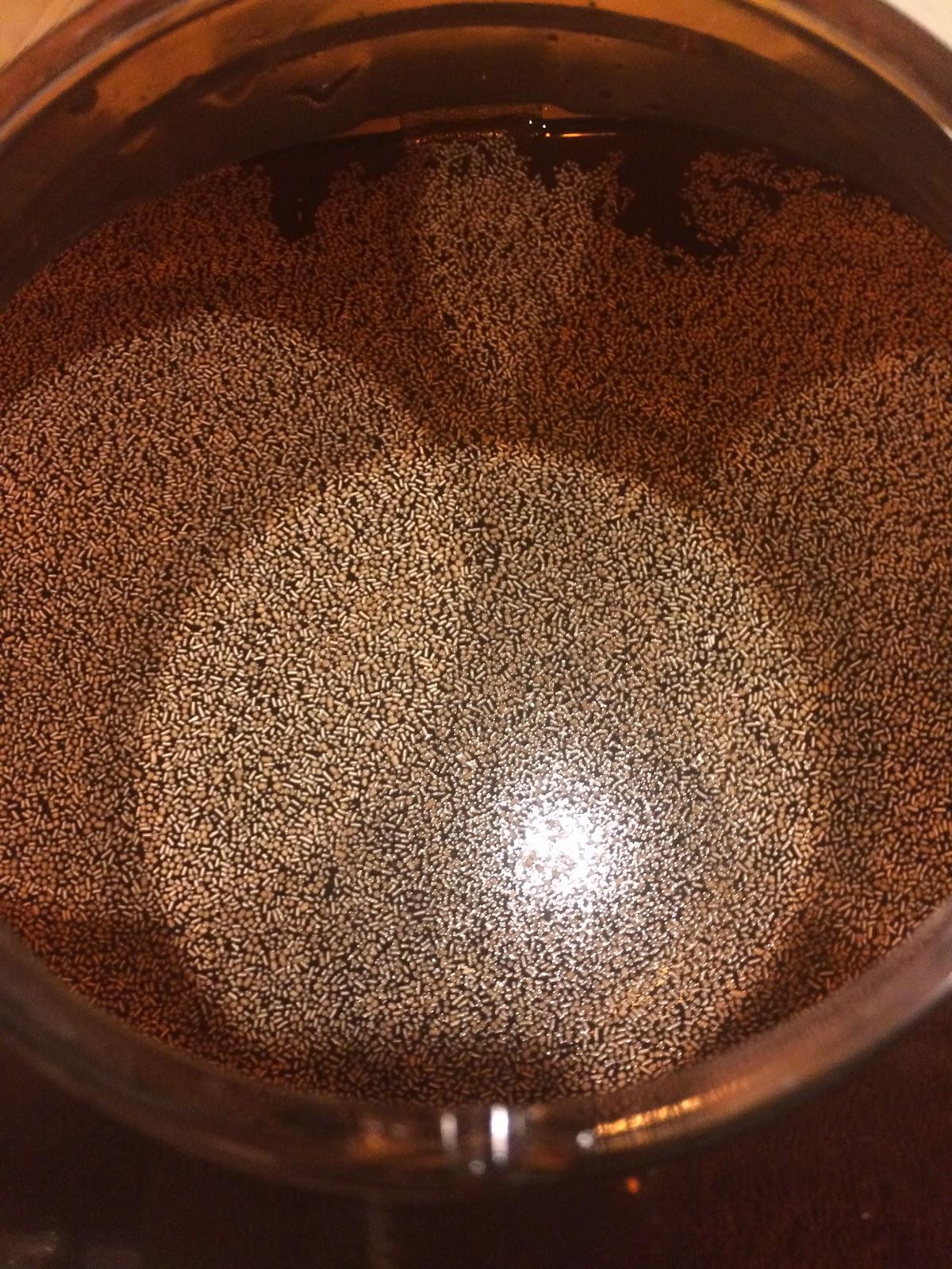 Yeast in Mr. Beer Keg