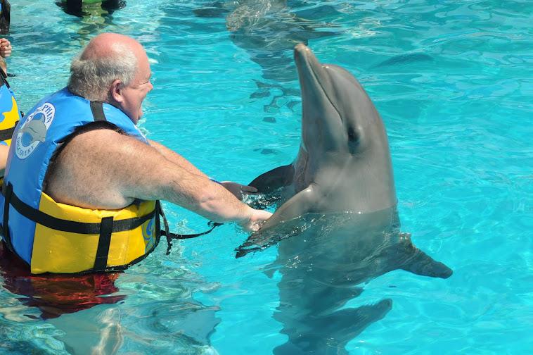 moi et nageoires