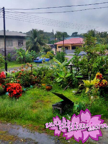Hujan di Kampung