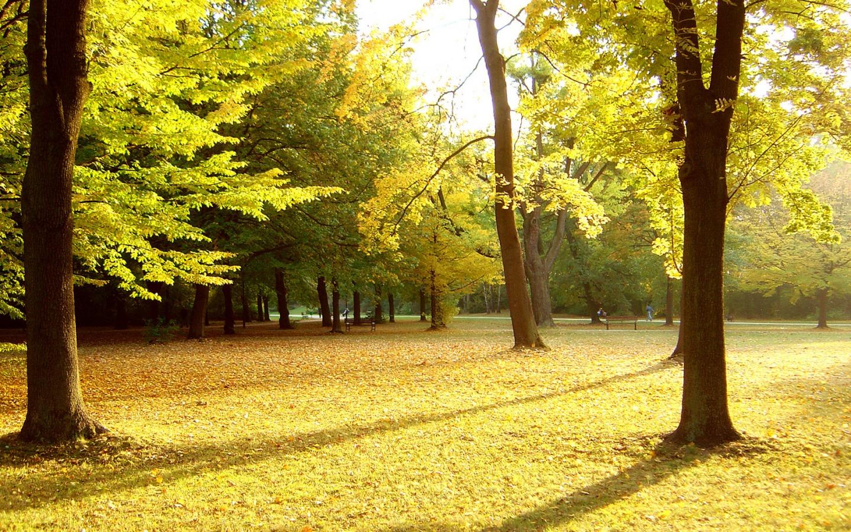 Parque Parque_en_otono