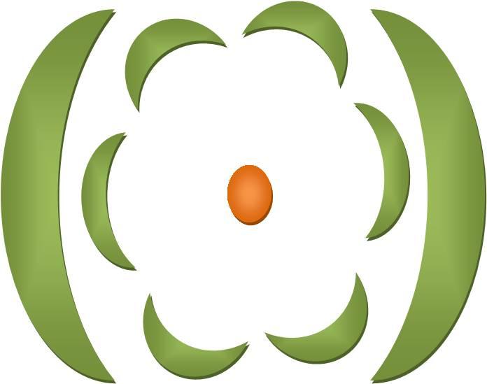 Deskripsi jagung description diagram dan rumus bunga rumus bunga untuk jagung yaitu o bunga betina k0 c62 a0 g1 ccuart Choice Image